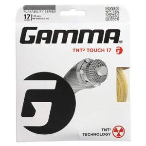 Gamma TNT2