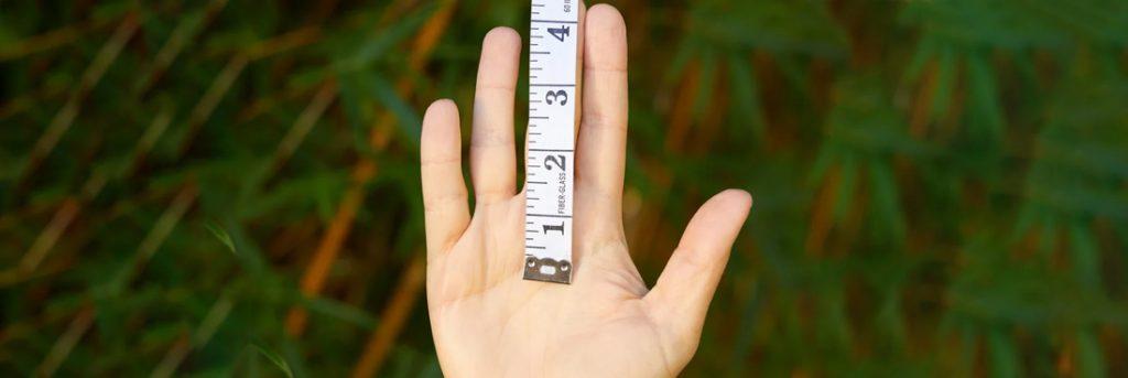 Measuring Through a Ruler